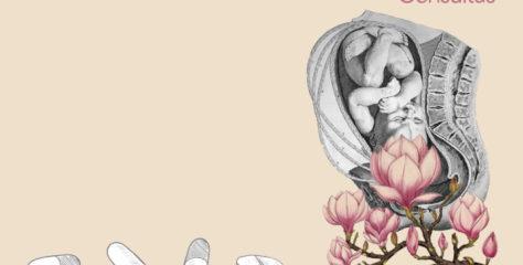 Ácido fólico: función, riesgos y beneficios